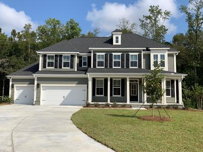 Summerville Single Family Home Contingent: 124 True Grit Way