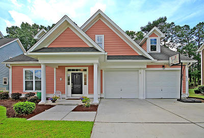 North Charleston Single Family Home For Sale: 8553 Royal Palms Lane