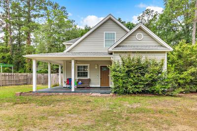 Walterboro Single Family Home For Sale: 307 Elizabeth Street