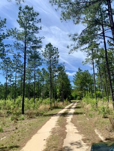 Walterboro Single Family Home For Sale: 1 Bells Highway Highway