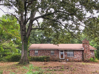 Johns Island Single Family Home Contingent: 3681 Morse Avenue