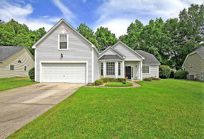 Mount Pleasant Single Family Home For Sale: 3382 Lindner Lane