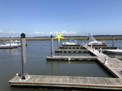 Edisto Island SC Residential Lots & Land For Sale: $91,890