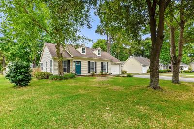 Summerville Single Family Home For Sale: 101 Upcerne Road