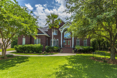Mount Pleasant Single Family Home For Sale: 2664 Daniels Pointe Boulevard