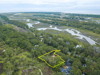 Charleston County Residential Lots & Land For Sale: 23 Blue Heron Pond Road
