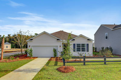 Johns Island Single Family Home For Sale: 2643 Alamanda Drive