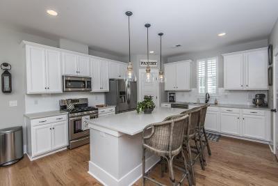 Mount Pleasant Single Family Home For Sale: 3587 Backshore Drive