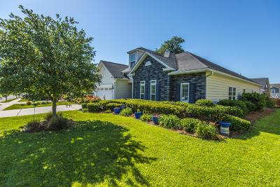Moncks Corner Single Family Home For Sale: 125 Saluda Drive