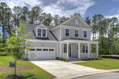 Charleston County Single Family Home For Sale: 1504 Charming Nancy Road