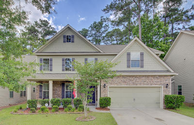 Summerville Single Family Home For Sale: 206 Comiskey Park Circle