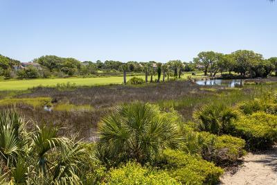 Johns Island Single Family Home For Sale: 818 Treeloft Trace