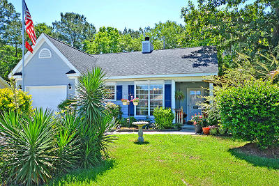 Summerville Single Family Home Contingent: 461 Courtland Dr