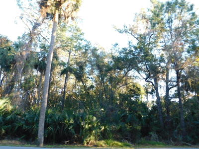 Charleston County Residential Lots & Land For Sale: 340 Governors Drive