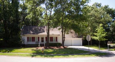 Goose Creek Single Family Home For Sale: 101 Deer Run Court