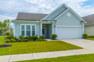 Summerville Single Family Home For Sale: 203 Sweet Tea Lane