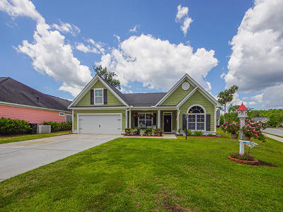 North Charleston Single Family Home For Sale: 8505 Sentry Circle