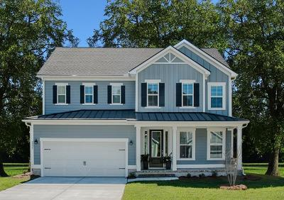 Single Family Home For Sale: 1015 Bering Lane