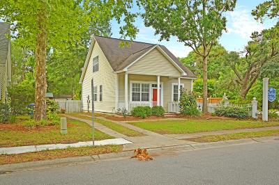 Mount Pleasant Single Family Home For Sale: 2300 Chadbury Lane