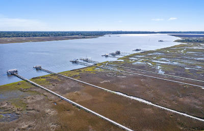 Johns Island Single Family Home For Sale: 1380 Headquarters Plantation Drive