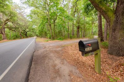 Johns Island Single Family Home For Sale: 3040 Bohicket Road