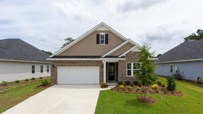Summerville Single Family Home For Sale: 514 Kilarney Road