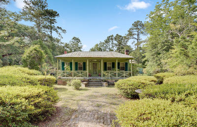 Summerville Single Family Home For Sale: 160 Shepard Street