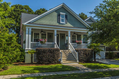 Mount Pleasant Single Family Home For Sale: 4249 Coolidge Street