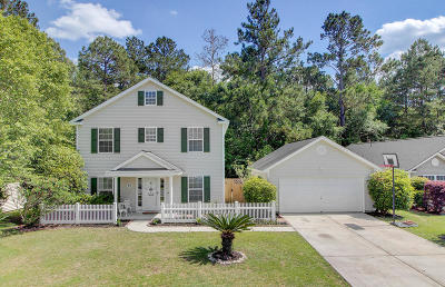 Charleston County, Berkeley County, Dorchester County Single Family Home For Sale: 199 Moon Dance Lane