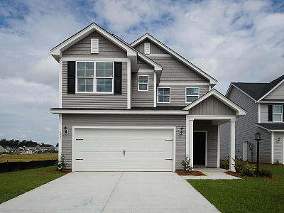 Summerville SC Single Family Home For Sale: $232,490