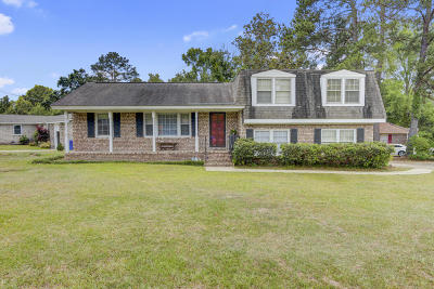 North Charleston Single Family Home For Sale: 8459 Delhi Road