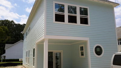 Charleston County Single Family Home For Sale: 257 Stefan Drive Drive