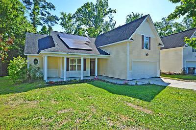 Summerville Single Family Home For Sale: 220 E Edgefield Drive