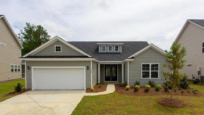 Summerville Single Family Home For Sale: 520 Kilarney Road
