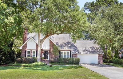 Mount Pleasant SC Single Family Home For Sale: $585,000
