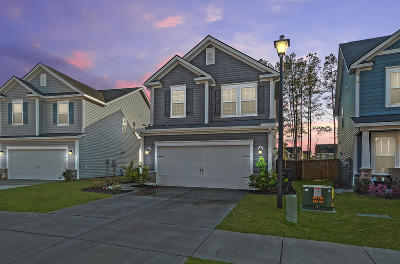 Summerville Single Family Home For Sale: 161 Basket Grass Lane