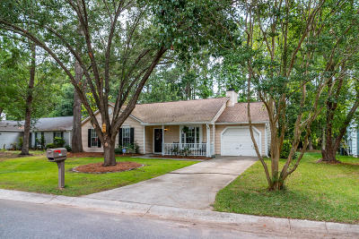 North Charleston Single Family Home For Sale: 8435 Scotts Mill Drive