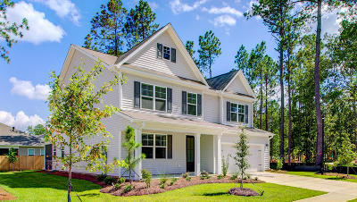 Summerville Single Family Home For Sale: 509 Kilarney Road