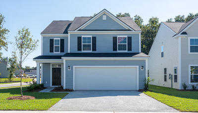 Moncks Corner Single Family Home For Sale: 141 Sugeree Drive