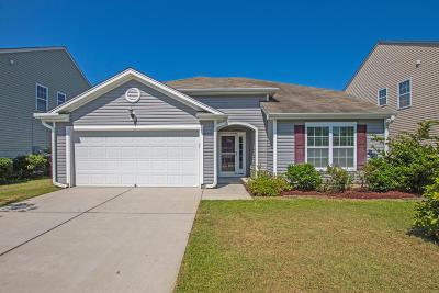 Summerville Single Family Home For Sale: 9020 Hema Lane