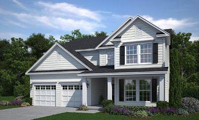 Summerville Single Family Home For Sale: 119 Bear Grass Street