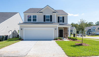 Moncks Corner Single Family Home For Sale: 120 Sugeree Drive
