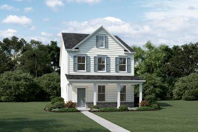Charleston Single Family Home For Sale: 145 Rowans Creek Drive