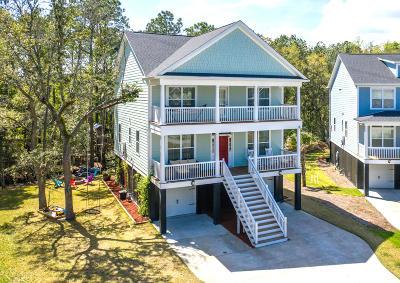 Mount Pleasant Single Family Home For Sale: 3597 Purple Martin Court
