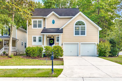 Charleston Single Family Home For Sale: 642 Fair Springs Drive