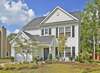 Johns Island Single Family Home For Sale: 1571 Burnswick Drive