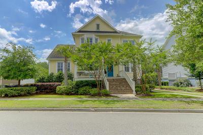Charleston Single Family Home For Sale: 1107 Oak Overhang Street