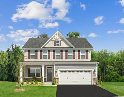 Summerville Single Family Home For Sale: 268 Lotz Drive