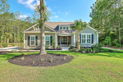Summerville Single Family Home For Sale: 5557 Alpine Drive