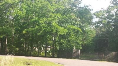 Residential Lots & Land For Sale: 180 Big Creek Drive